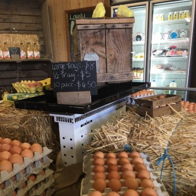 sourcing eggs straight from the farm at Hillside Harvest